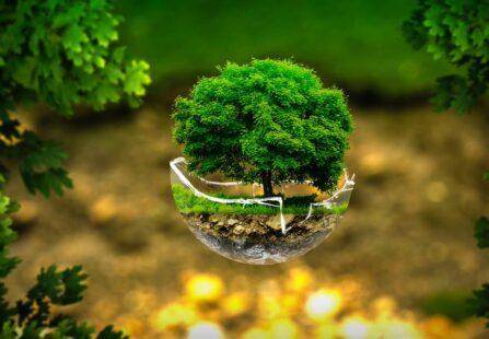 Earth Day: salvare l'ambiente per salvare l'economia