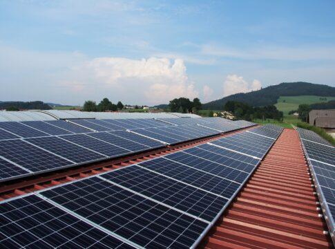 Ecosostenibilità: Green Bond cosa sono e come funzionano?