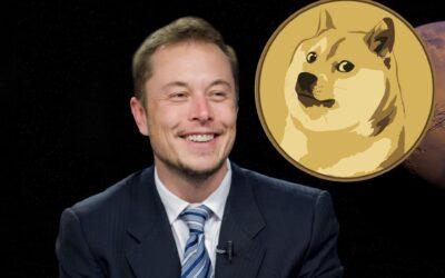 """Dogecoin, la cryptovaluta di Elon Musk: """"La moneta della gente"""""""