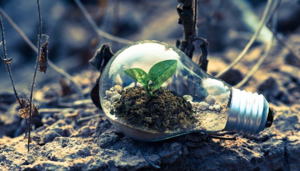Investire in sostenibilità